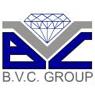 /images/logos/local/bvc_group.jpg