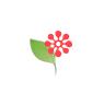 /images/logos/local/th_bangalorenetflorist.jpg