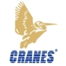 /images/logos/local/th_cranes_software.jpg