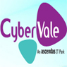 /images/logos/local/th_cybervale.jpg