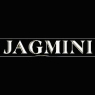 /images/logos/local/th_jagmini.jpg