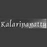 /images/logos/local/th_kalaripayattu.jpg