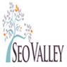 /images/logos/local/th_seovalley.jpg