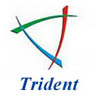/images/logos/local/th_tridentinfosol.jpg