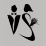/images/logos/local/th_vividsaaga.jpg