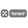 Torrent Pharmaceuticals Limited