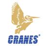 cranes_software.jpg