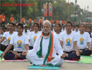 Yoga Day Celebrations 2016