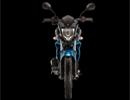 Yamaha FZ S F1